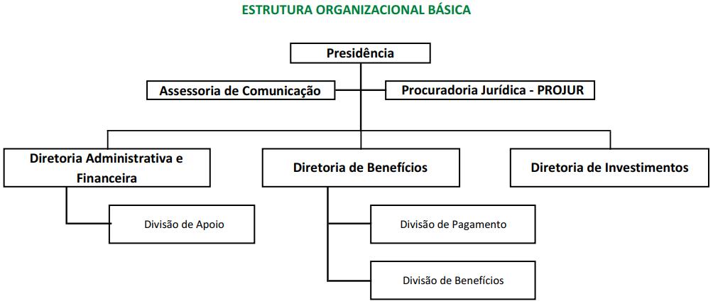 Estrutura Organizacional Básica